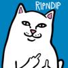 RIPNDIP